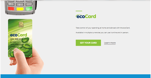 Ecopayz features